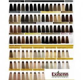Exitenn Color Creme 60 Ml , Color 11/01 Platino Perla New