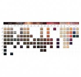 Loreal Inoa 60gr, Color 3,20