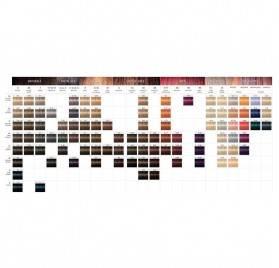 Loreal Inoa 60g, Color 4.56