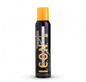 Icon Reformer Quick Lock Spray 189G