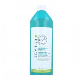 Matrix Biolage Raw Scalp AntiCaspa Champú 1000 ml