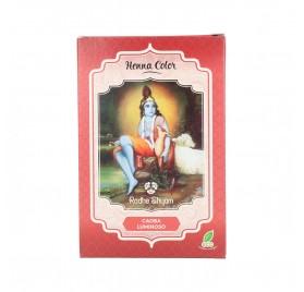 Radhe Shyam Henna Poudre Acajou Brillant 100G